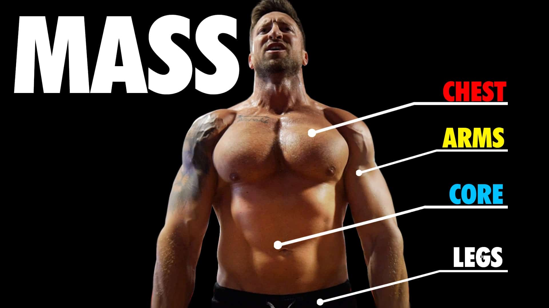Troy mass building routine workout