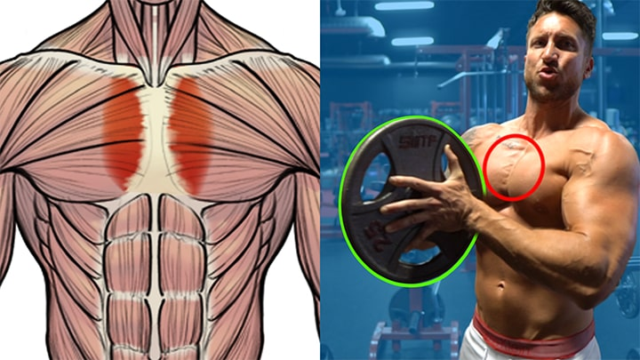 Inner Chest Exercises
