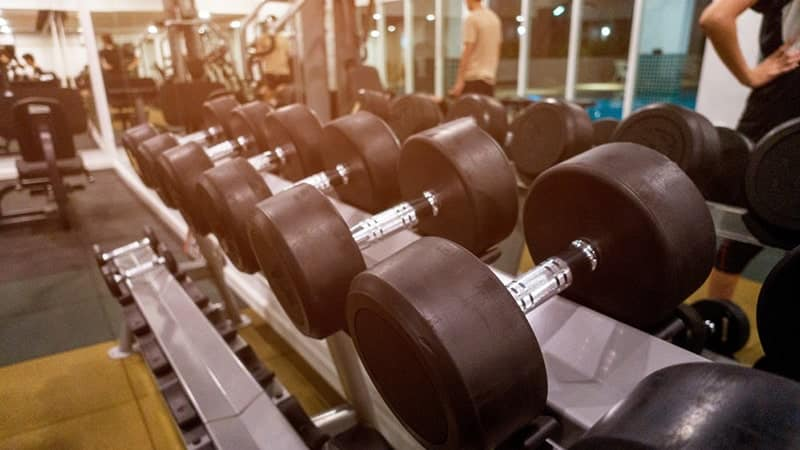 multiple dumbbells on rack at the gym